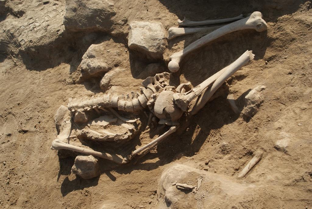 metsamor prehistorik iskelet