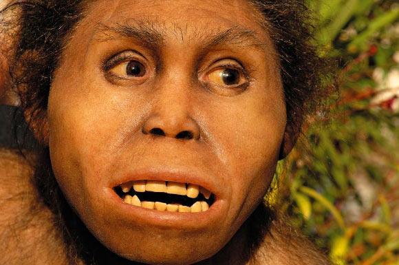 homo erectus tehlikede