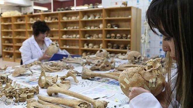 anadolu'nun kemik koleksiyonu