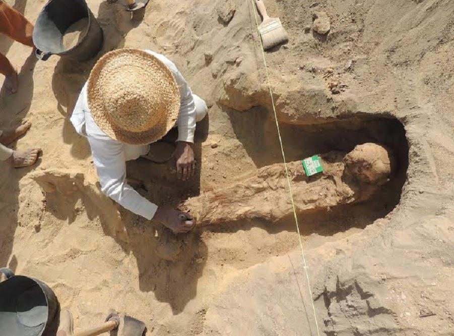 1 milyon mumyanın çıktığı kazı iptal edildi