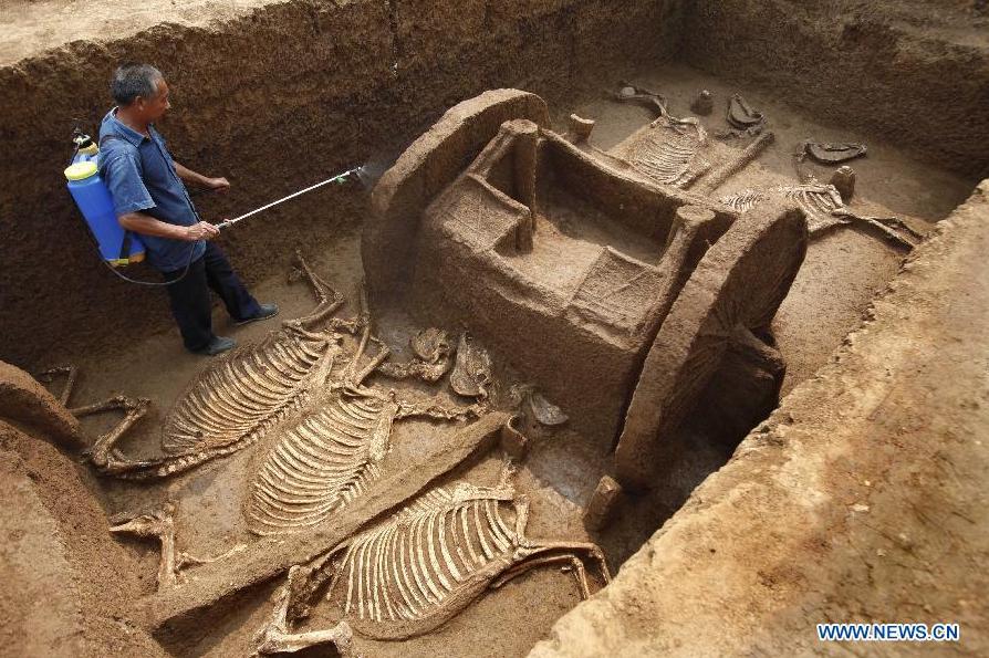 çinde antik toplu at mezarı ortaya çıktı
