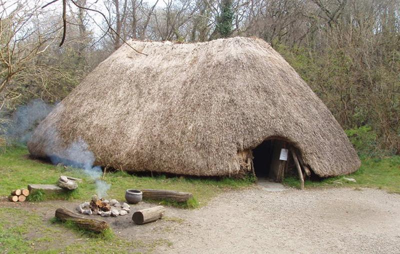neolitik dönemde irlanda