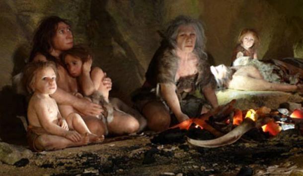 neandertaller niye yok oldu