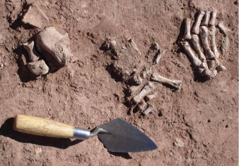 İnsan kemiklerinin etlerinden ayrıldığı bir yapı bulundu.