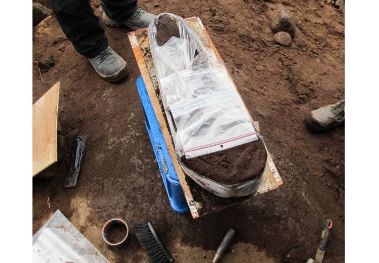 norveç'in en eski insanı 8000 yıllık