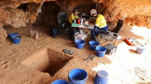 Pilbara kazılarından Avustralyadaki erken insan faaliyetlerine dair önemli bilgiler
