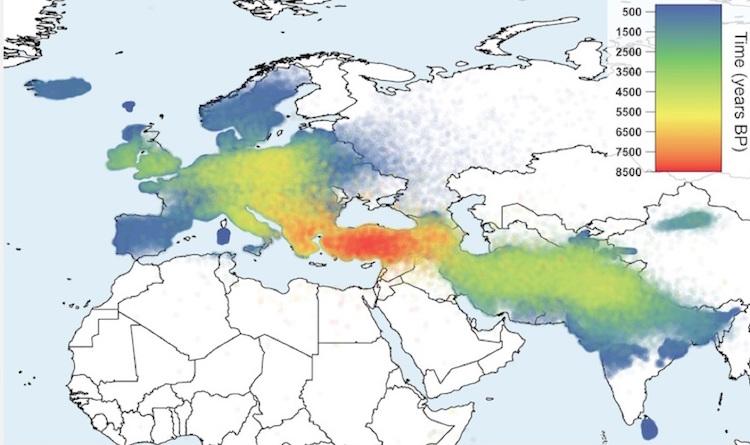 Hint-Avrupa dillerinin Anadolu hipotezine göre yayılması