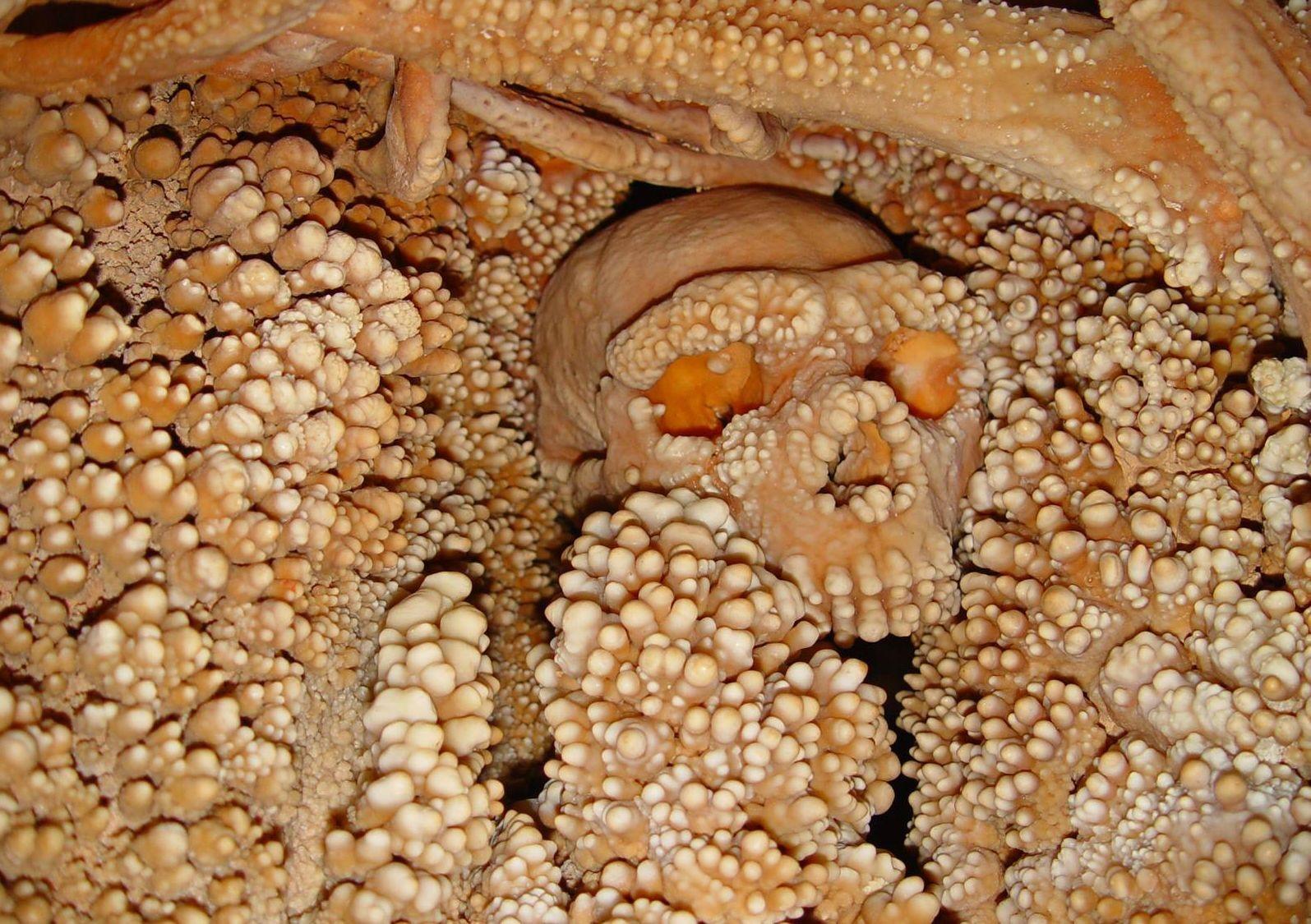 italya mağara 187,000 yıllık neanderthal