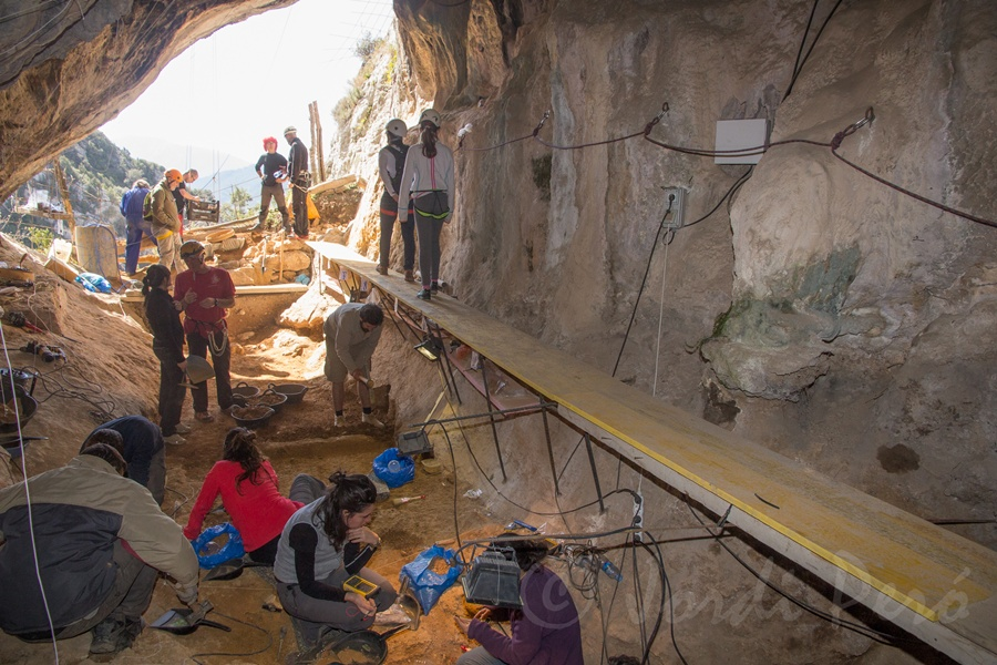 neandertaller ve vahşi hayvanlar aynı mağarada yaşadı