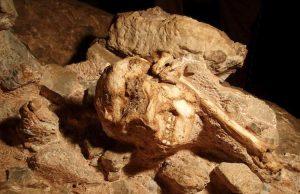 lucy'nin atası little foot 3.67 milyon yaşında