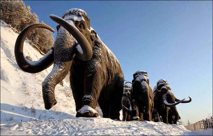 mamutların nesli mineral eksikliğinden tükendi