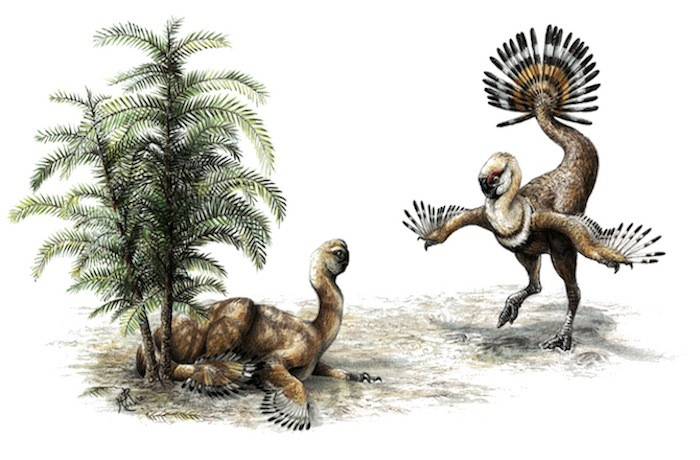 dinozor romeo ve juliet moğolistan