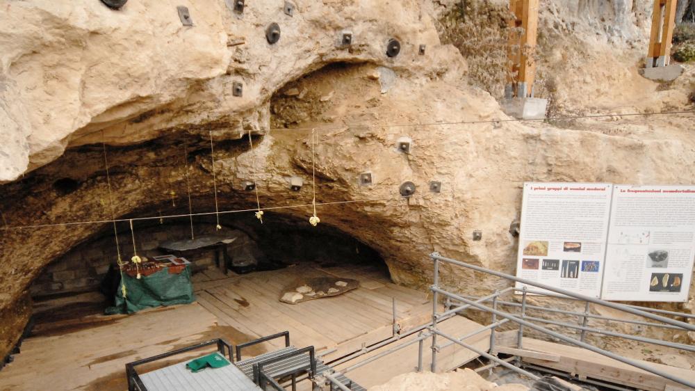 Fosil Süt Dişleri, Neandertallerin Yok Olmasında Modern İnsanın Rolünü Gösteriyor