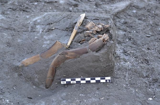 tarihöncesi insan balıkçılıkta modern balıkçılık aletlerini kullanıyordu.
