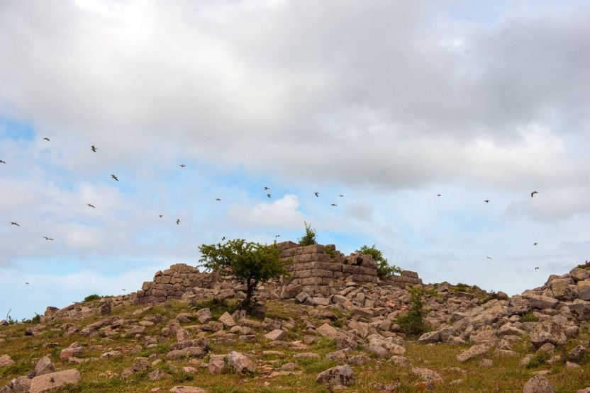 neandria antik kenti maden şirketlerinin tehlikesi altında