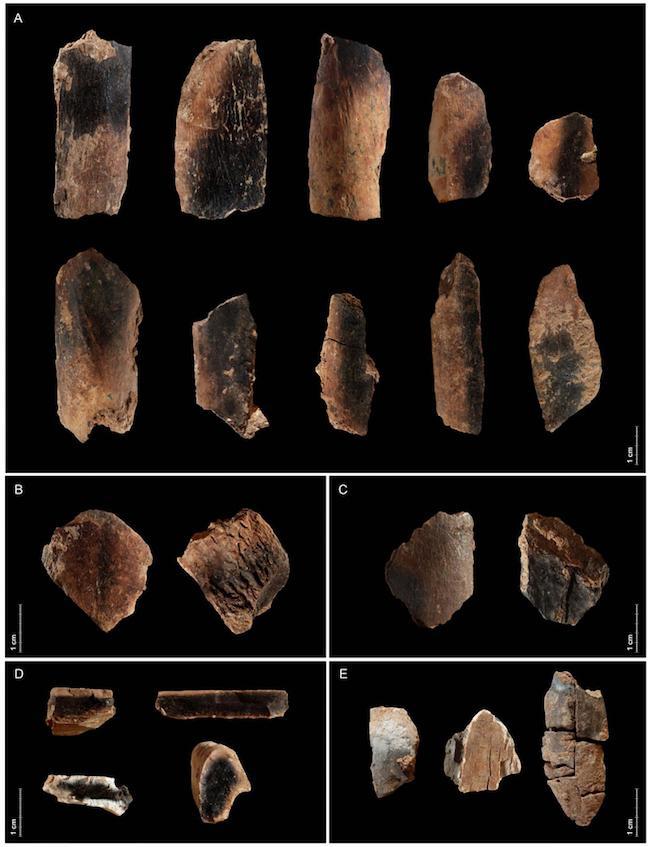 Qesem mağarasından gömülmüş hayvan kemikleri. Görsel: Ruth Blasco