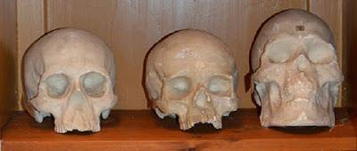 polinezya antropoloji