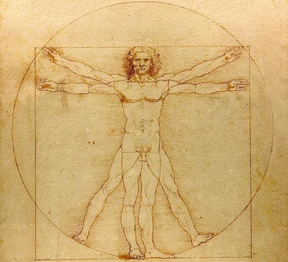 İnsan, Daha Zeki ve Uzun Boylu Olmak Üzere Evrimleşti