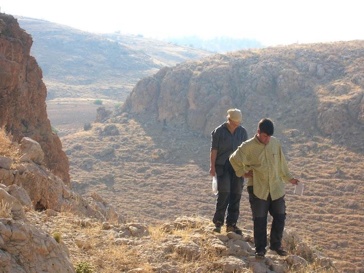 Ürdün'deki 45,000 Yıllık Taş Aletler İş Bölümünü Gösteriyor