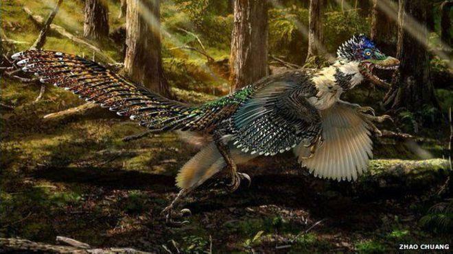 Zhenyuanlong adında kanatlı dinozor fosili bulundu