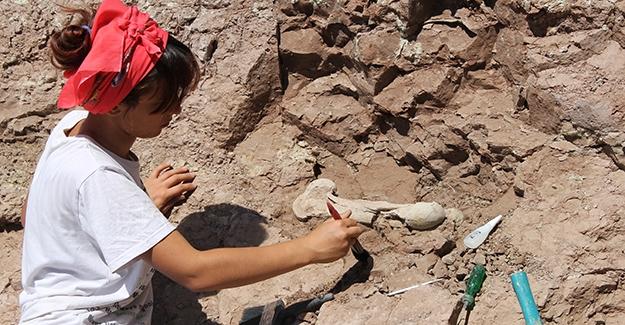 Çankırı'da 8 Milyon Yıllık Fosiller Bulunuyor