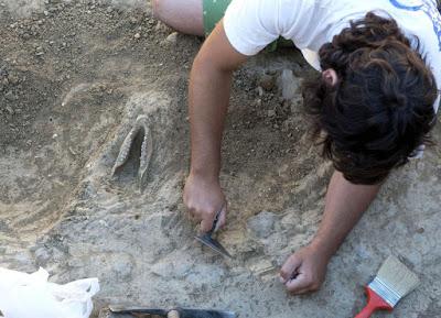 brezilya tarihöncesi arkeolojisi