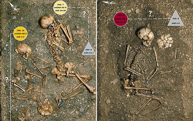 7000 Yıllık Toplu Mezar Neolitik Dönemde Katliamı Gösteriyor