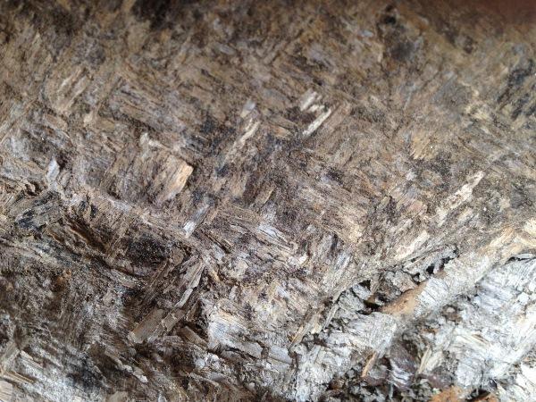 Aşıklı Höyük'te 10,000 Yıllık Hasır Bulundu