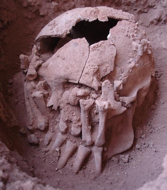 Brezilya'da Elleriyle Birlikte Gömülmüş 9,000 Yıllık Kafatası Bulundu