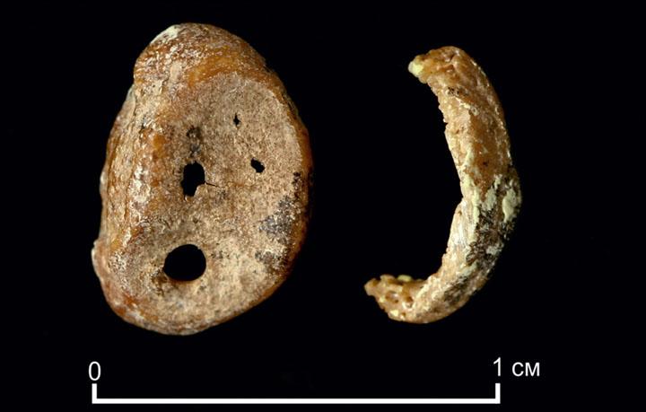 Denisovalılar 65,000 Yılda Kuşaklar Boyunca Aynı Mağaraya Geri Dönmüş