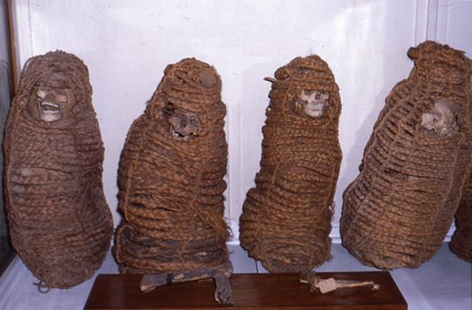1000 Yıllık Mumyada Antibiyotiğe Dirençli Genler Keşfedildi