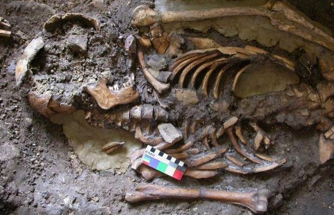 Modern Avrupalı Genomunu Oluşturan Dördüncü Soy Keşfedildi