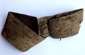 Ağaç Kabuğundaki Yazıda Ortaçağ Gezgininin Hüzünlü Hikayesi Keşfedild
