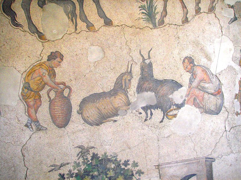 1500 Yıllık Büyük Saray Mozaikleri Restore Edilecek