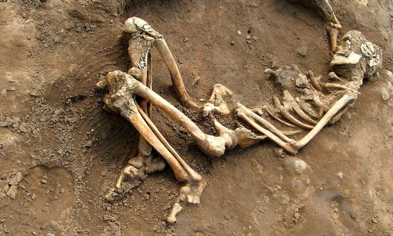Romalılar'ın hayat hikayeleri kemiklerinde yazılı. Şu anda York Üniversitesi kampüsünde bulunan bir Romalı iskeleti. Fotoğraf: University of York/PA