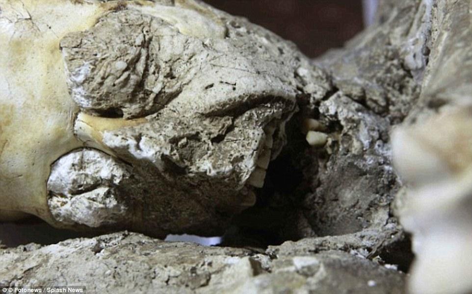 Pompeii İnsanlarına Yapılan Tomografik Taramalar Sonuç Veriyor