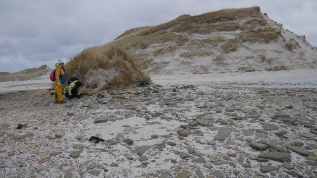 İskoçya'da Yer Değiştiren Kum Tepesi Bronz Çağı Yerleşimini Ortaya Çıkardı