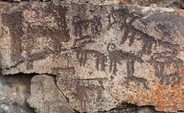 Kars'ta Bulunan Tarihi Öncesi Kaya Resimlerinin Fotoğrafları