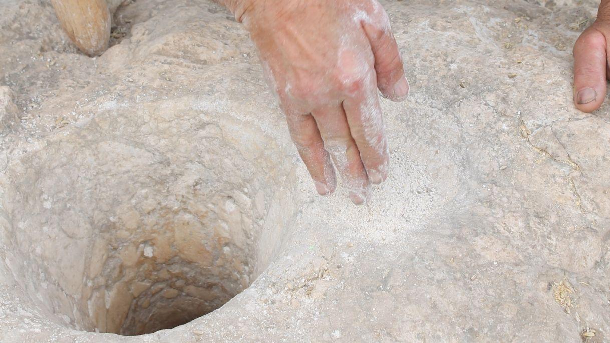 Prof Eitam, Huruk Musa'da bulunan 12,500 yılllık taş havanları kullanarak arpadan yapılan unun nasıl havandan çıkarıldığını gösteriyor. Görsel: Sara Katzburg