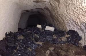 İtalya'daki Roma Yeraltı Mezarlığı Çöplük Olarak Kullanıldı