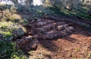 Bir İyon Denizi Adası olan Lefkada'da yürütülen arkeolojik çalışmalar sonucunda daha önce keşfedilmiş olan bir antik tiyatro yapısı ortaya çıkarıldı