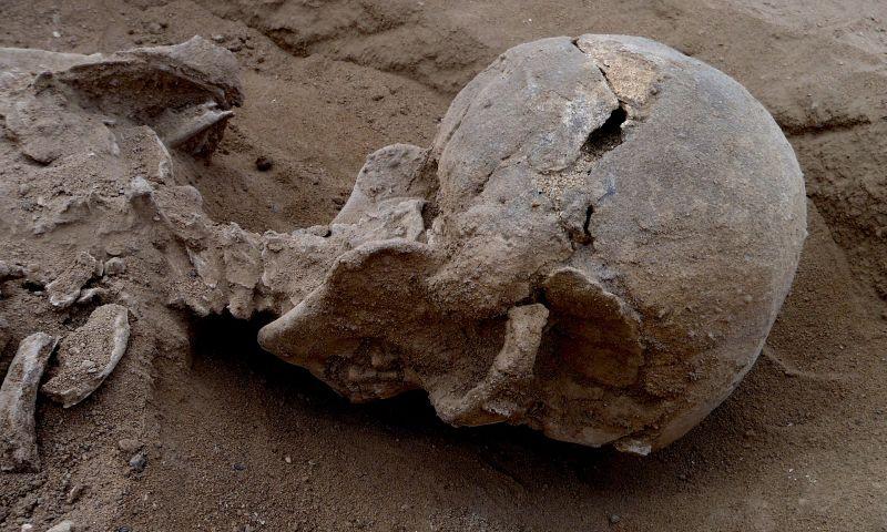 Kenya'da 10.000 Yıllık Bilinen En Eski Katliamın İzleri Bulundu