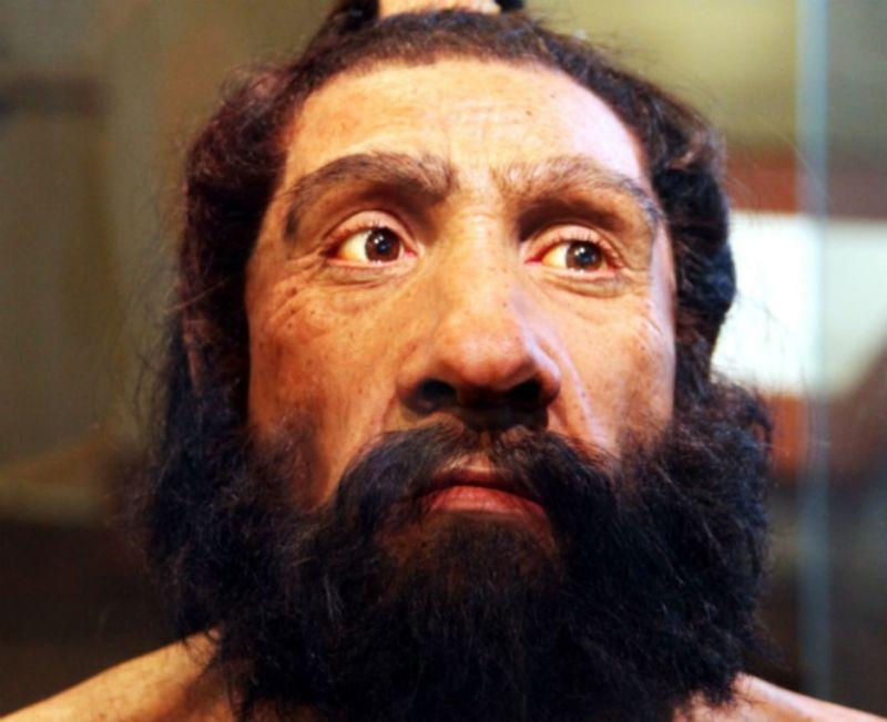 70,000 yıl önce yaşamış bir Neandertal'in yeniden oluşturulmuş modeli. Fotoğraf: John Gurche, 2010