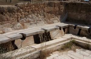 Roma'da Hamam ve Tuvaletlere Rağmen Hastalık Yayan Parazitler Artmış