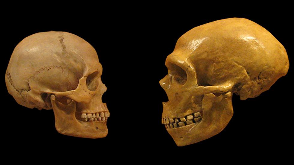 İlk İnsan-Neandertal Çiftleşmesi 100,000 Yıl Önce Gerçekleşti