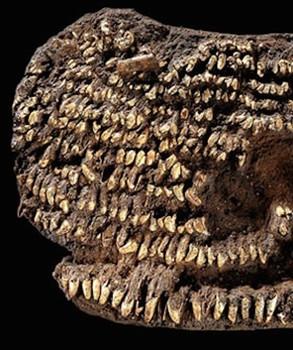 MÖ. 2500 yılına tarihlendirilen cüzdan.