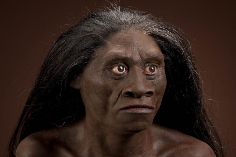 Hobbit'lerin Hastalıklı Homo sapiens Olmadığı Kesinleşti