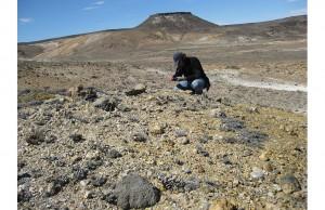 Arjantin'de Devasa Bir Jurasik Dönem Fosil Yatağı Bulundu