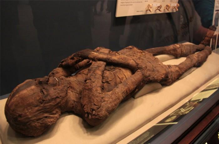 2500 Yıllık Mumyaya Tecavüz Yalanı