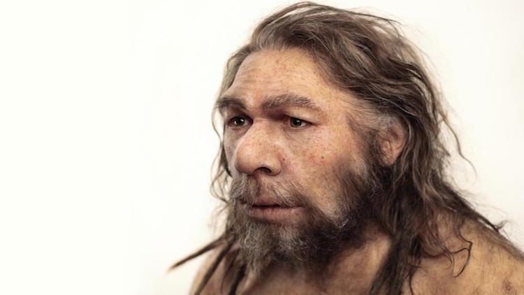 Neandertallerden aldığımız genler pek çok hastalığı tetikliyor. (Credit: Entressangle/Daynes/SPL)